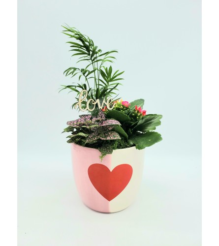 2-tone Heart V-Day Planter