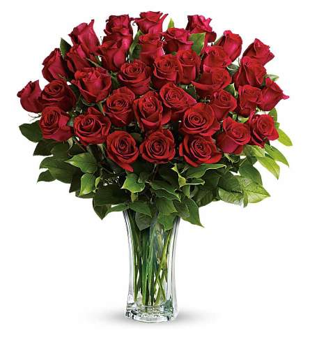 Three Dozen Beautiful Red Roses Arranged