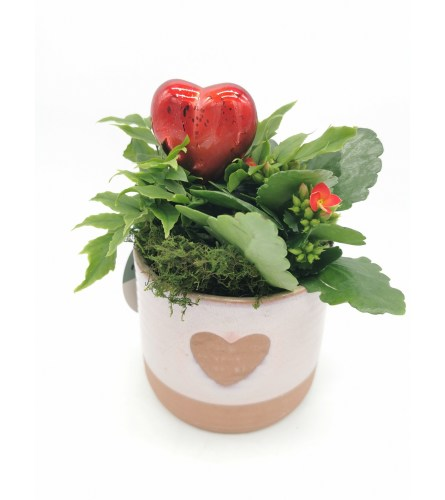 Terra Cotta Heart Cutout Planter