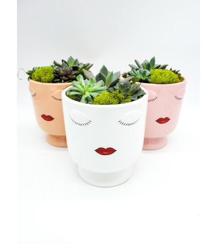 Diva Planter