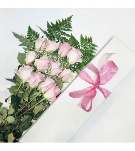 Dozen Boxed Pink Roses