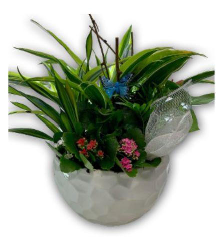 Magical Garden Planter