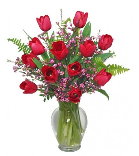 Tulips and Waxflower Bouquet