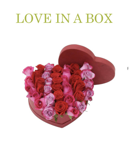Love Is In A Box
