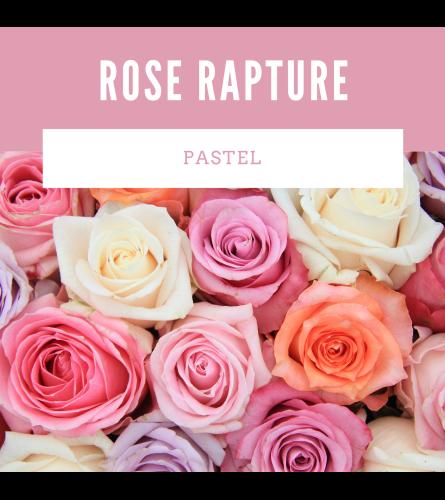 Rose Rapture Pastel