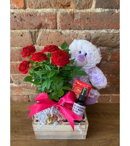 Everything Nice Valentine's Day Gift Set