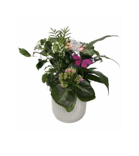 Ceramic Garden Assortment