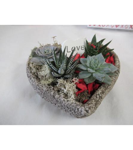 I Love you succulent garden