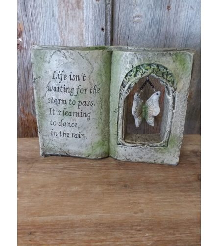 Statue Book w/ Butterfly 'Life isn't Waiting'