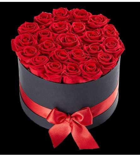 24 Red Preserved Roses in Black Box