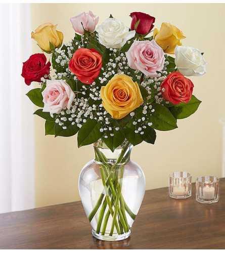 Dozen Mixed Premium Roses