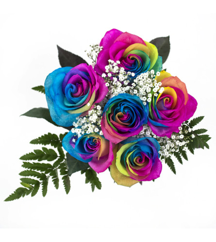 6 Rainbow Roses wrapped