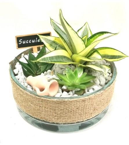 Natural Burlap Succulent Dish
