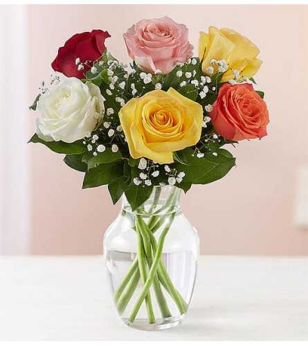 Love's Embrace Assorted Roses Bouquet