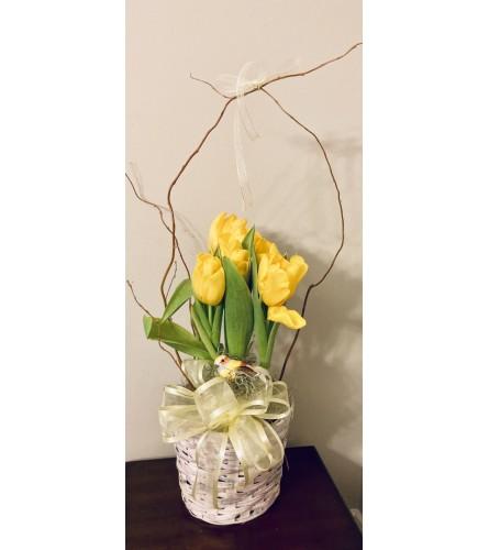 Spring Tulip Surprise