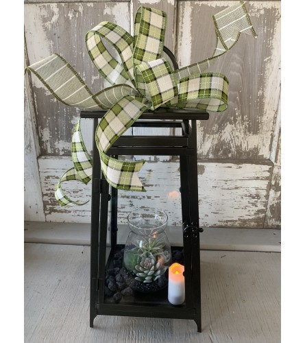 Open Succulent Vase Lantern