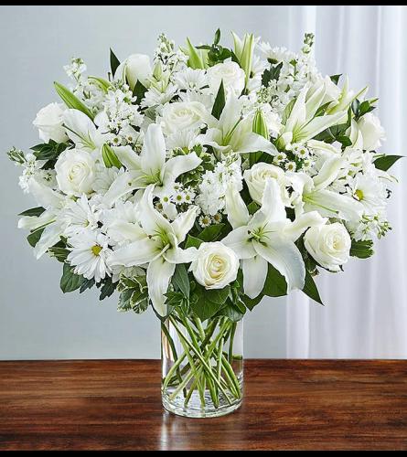 Pearl White Elegancia