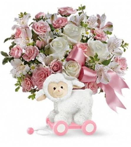 Sweet Little Lamb in Pink