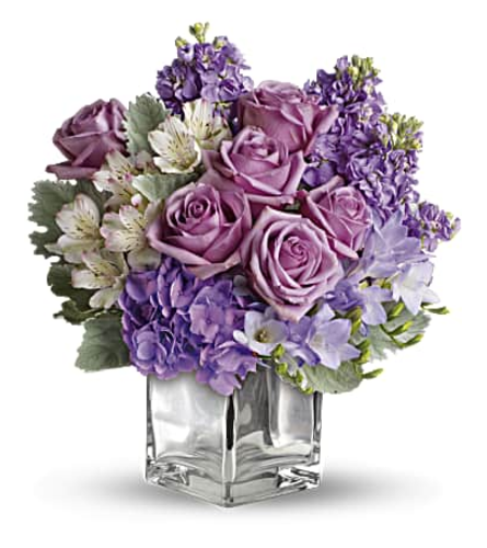 Lavender Blooms In A Cube