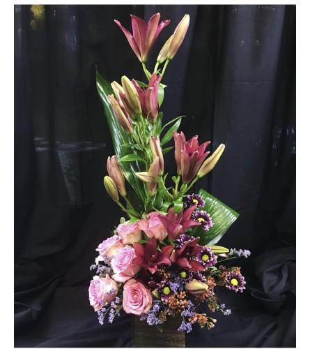 Oink Dream By Dynamic Flowers