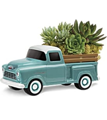 THE PERFECT CHEVY PICKUP SUCCULENTS