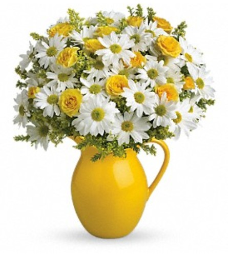 SUNNY DAY PITCHER WITH DAISIES