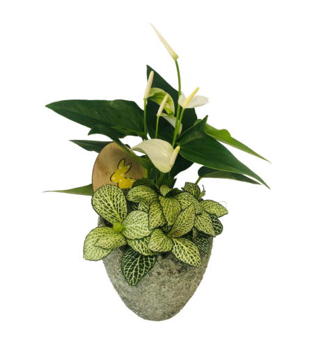small Tropical Stone Planter