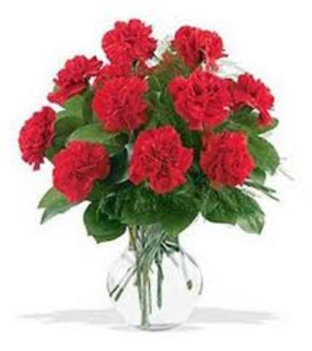 classic traditional  Red carnation in vase
