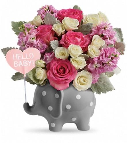 Hello Sweet Baby Girl - Pink (Teleflora)