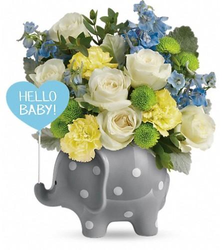 Hello Sweet Baby Boy - Blue (Teleflora)