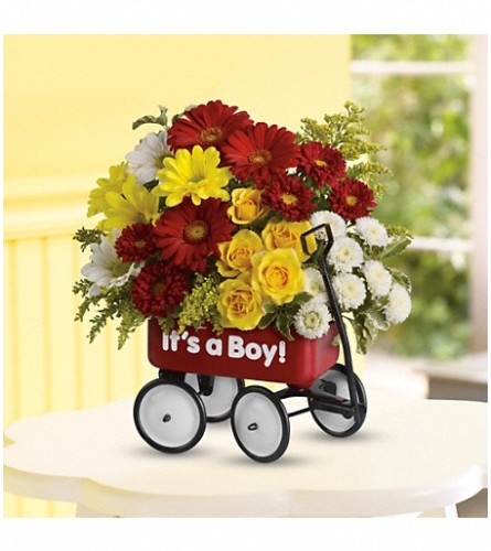 Baby Boy's Red Wagon (Teleflora)