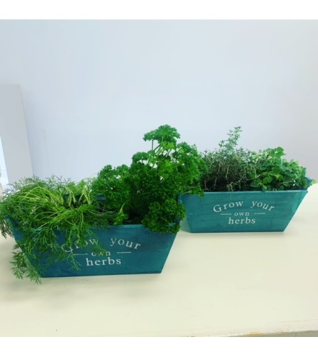 ASSORTED HERB BOX