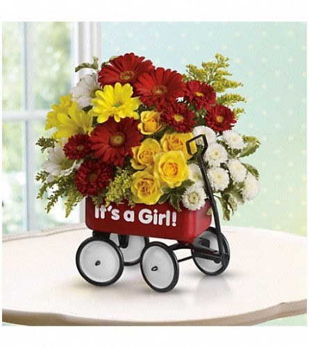 Teleflora's Baby Girl's Red Wagon