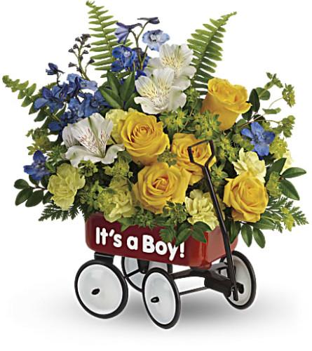 Teleflora's Sweet Little Red Wagon - Baby Boy