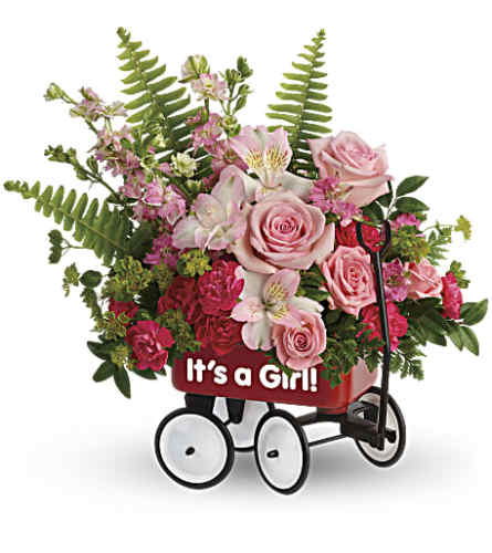 Teleflora's Welcome Beautiful Wagon - Baby Girl