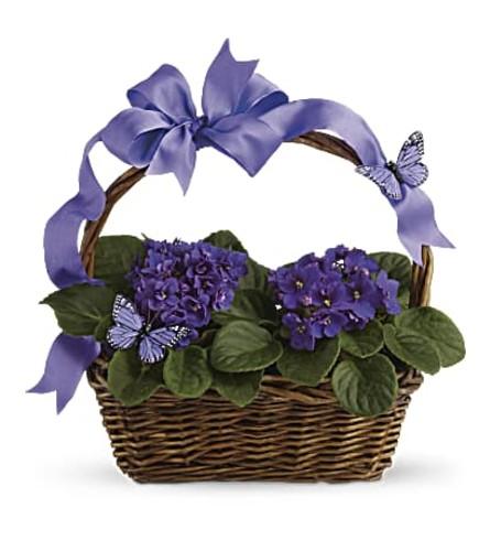 African Violets Spring Basket