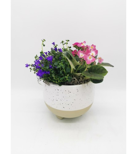 Speckled Egg Planter
