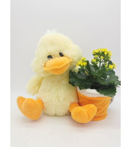 Just Duckie