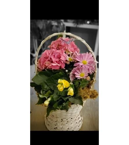 Forever in Bloom Garden Basket