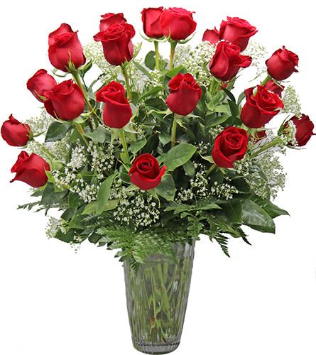 2 Dozen Red Roses ll