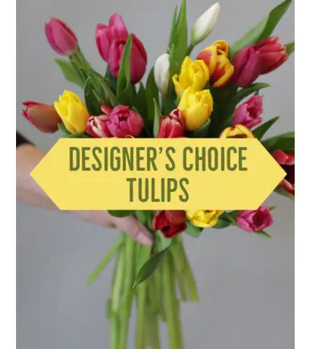 Designer Choice tulips in a vase