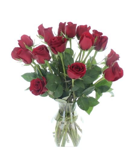 2 Dozen red rose