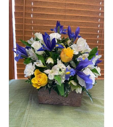 Basket mix with white, blue & yellow