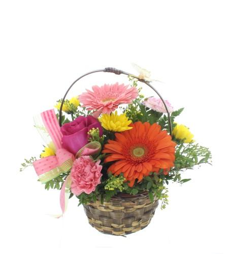 Thank you ! Basket