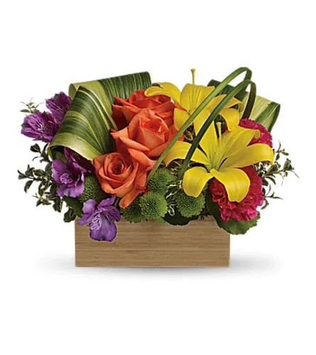 Shades of Brilliance by Teleflora