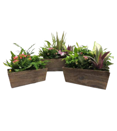 Stained Rectangle Wooden Planter