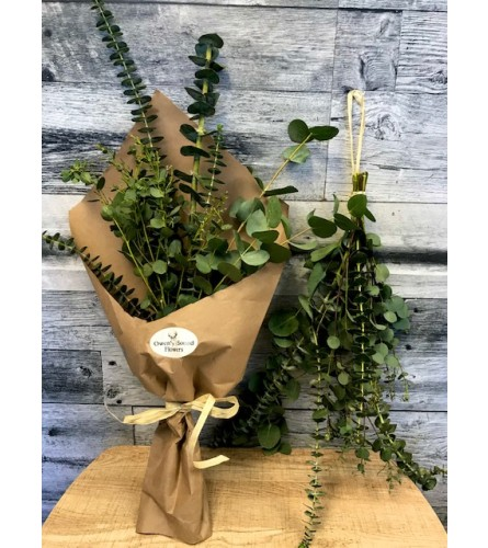 Aromatherapy Bundle ( Eucalyptus Bundle) **Pick Up Only