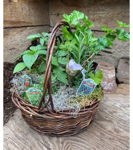 Rothe's Herb & Veggie Garden - Locally Grown