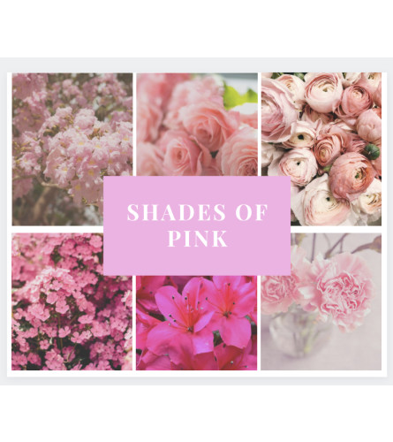 Shades of Pink Arrangement