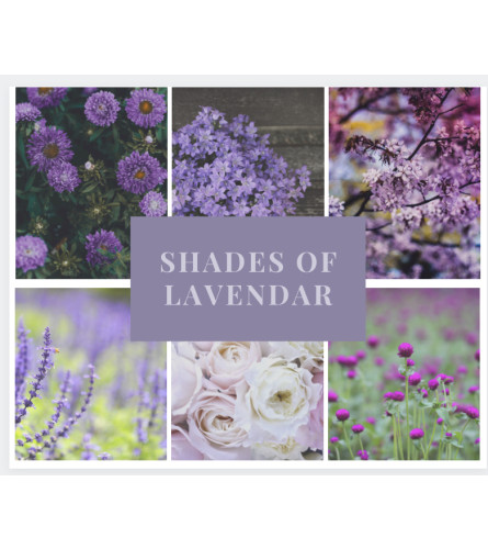 Shades of Lavender Arrangement